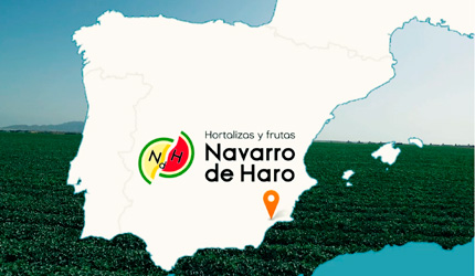 Presencia en España