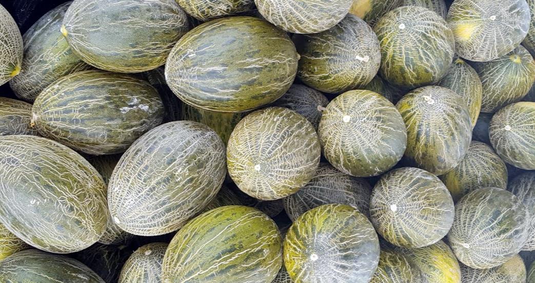 Comercializacion Melon