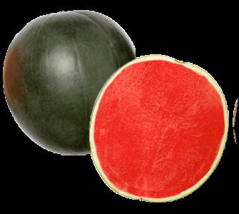 sandias-hortalizas-y-frutas-navarro-de-haro